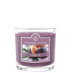Colonial Candle Tropical Fig – Small